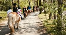 Pony rijden in Center Parcs Bispinger Heide