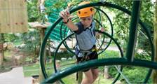 High Adventure Experience (outdoor) in Center Parcs De Eemhof